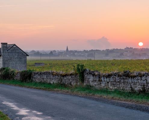 Das Bild zeigt eine Landschaft im Loire Tal - Domaine des Varinelles - Crémant de Loire AOP