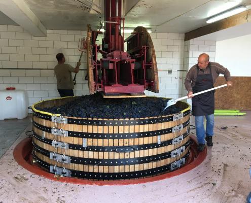 Das Bild zeigt das die Coquard Presse von dem Weingut Biard-Loyaux Vallée de la Marne Champagne