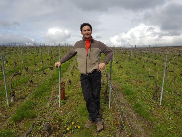 Das Bild zeigt Damien Chéré Winzer in die Champagne Côte des Blancs