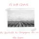 Das Bild zeigt ein altes Foto von einem Weinberg