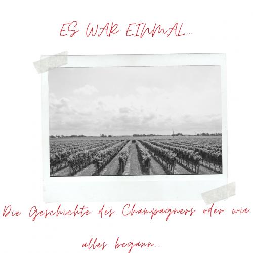 Das Bild zeigt ein altes Foto von einem Weinberg, um die Geschichte des Champagners zu verdeutlichen.
